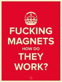 icp-magnets2