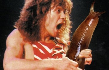 Faces of Guitar Solos Playing Giant Slugs (photos)